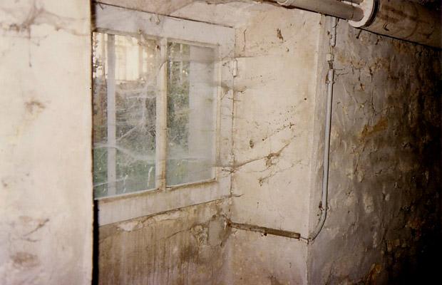 De grandes baies vitrées...